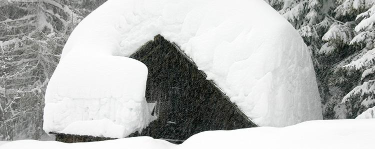 Schäden durch Schneedruck Gallery